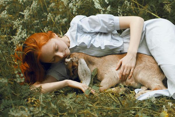 Katerina Plotnikova Photography Deer
