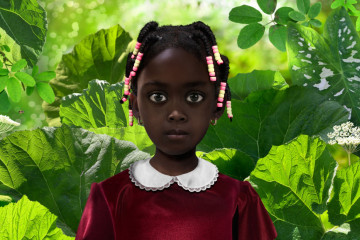 Ruud Van Empel Digital Art Photography 000