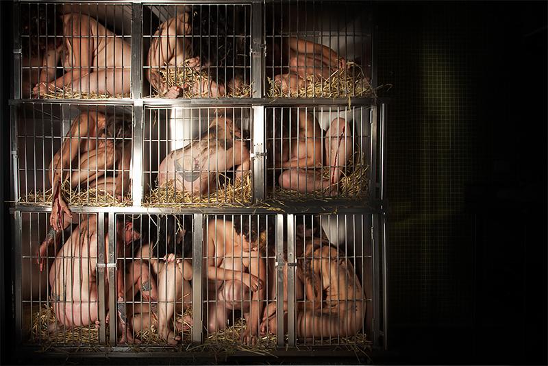 Cages_Giselle_Natassia_beautifulbizarre